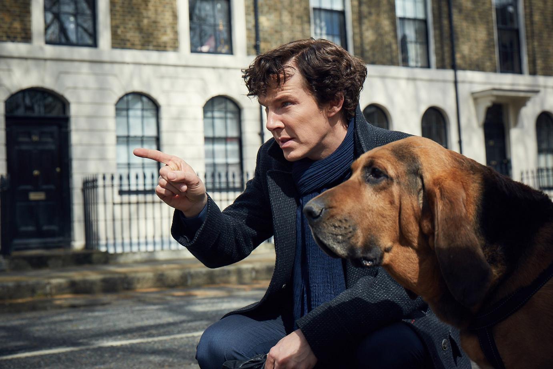 Sherlock Neue Staffel